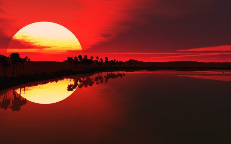 sea-sun-sunset-palm-silhouette